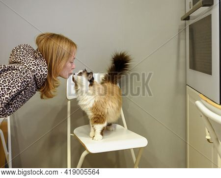 Young Beautiful Woman Kisses Her Fluffy Cute Cat In Her Kitchen.