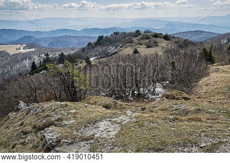Deciduous Forest With Snowy Places In Spring Time, Klak Hill, Slovak Republic. Seasonal Natural Scen