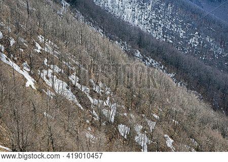 Deciduous Forest With Snowy Places, Klak Hill, Slovak Republic. Springtime Natural Scene.