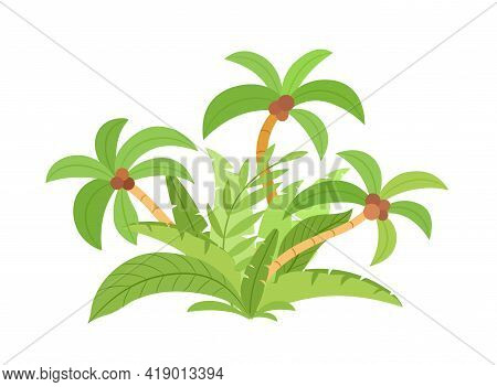 Jungle. Palm Leaves. A Tropical Forest. Summer Tropical Leaf. Exotic Hawaiian Jungle In Summer Style