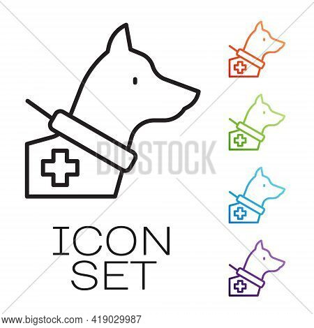 Black Line Guide Dog Icon Isolated On White Background. Set Icons Colorful. Vector
