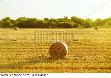 Countryside Landscape Of Fields With Hay Bales On Autumn Or Late Summer Sunset. Agricultural Farmlan