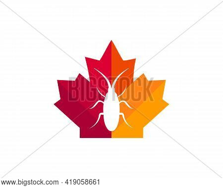 Maple Seed Insect Logo Design. Canadian Seed Insect Logo. Red Maple Leaf With Seed Insect Vector