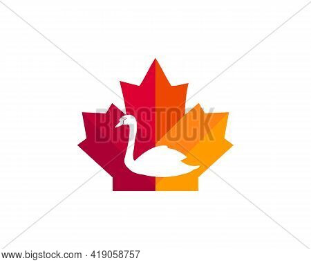 Maple Swan Logo Design. Canadian Swan Logo. Red Maple Leaf With Swan Vector