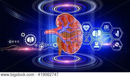 Kidney Analysis Virtual Reality A Virtual Reality 3d Graphics Showing Rotating Kidney Model With Med