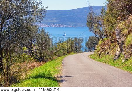 Road To Bay. Beautiful Mountain Landscape With Country Road Near Olive Trees. Montenegro, Bay Of Kot