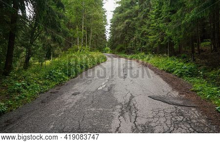 Worn Asphalt Forest Road, Trees And Grass On Both Sides