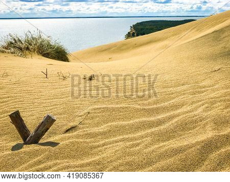 Protective Structures On The Curonian Spit Against The Movement Of Sand Dunes. Curonian Spit, Lithua