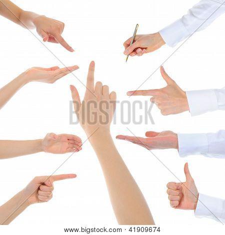 Hand on white backgroud