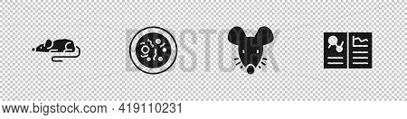 Set Experimental Mouse, Petri Dish With Bacteria, And Clinical Record Icon. Vector