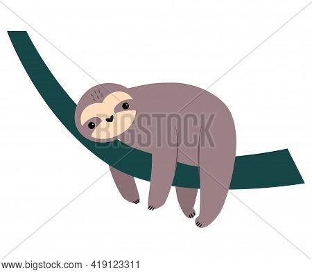 Cute Sloth Animal, Exotic Tropical Fauna Element, African Savanna Inhabitant Cartoon Vector Illustra