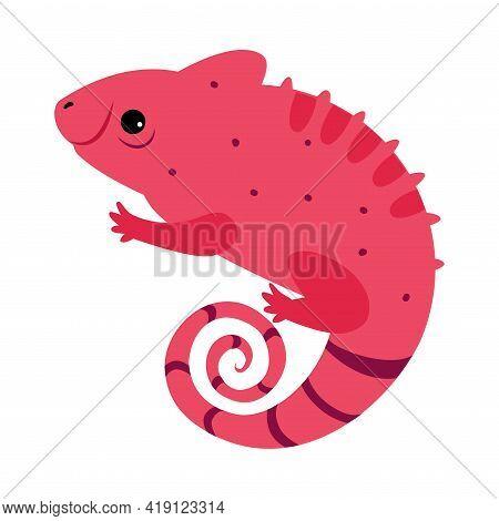 Cute Chameleon Animal, Exotic Tropical Fauna Element, African Savanna Inhabitant Cartoon Vector Illu