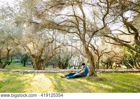 Man With A Pregnant Woman In A Long Blue Dress Lie On The Grass Under A Sprawling Olive Tree In The