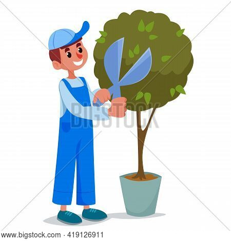 The Gardener In A Working Uniform And Cap Cuts The Green Bush With Scissors. Landscaping And Mainten