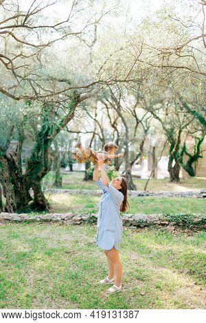 Mom Throws Up The Child And Plays With Him Among The Trees In The Olive Grove
