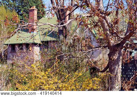 Deciduous Plants And Trees With Spring Flower Blossoms On The Backyard Of A Vintage House Taken At A