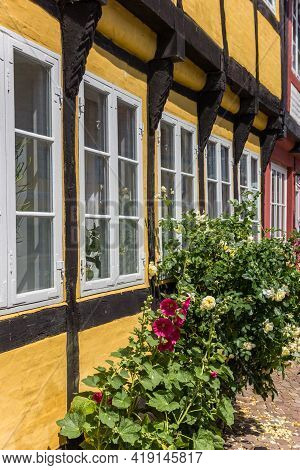 Flowers In Front Of A Half Timbered House In Ribe, Denmark
