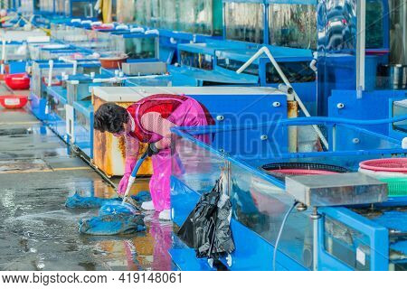 Daecheon, South Korea; April 25, 2021: Unidentified Woman Using Water Hose To Wash Sand Bags At Fish