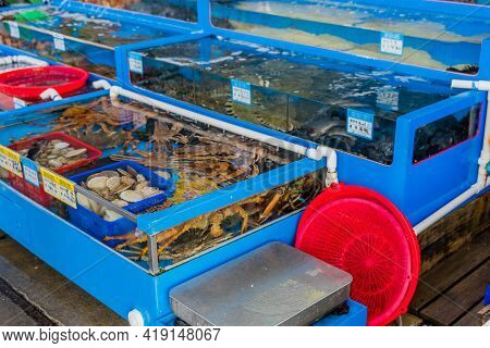 Daecheon, South Korea; April 25, 2021: Water Tanks Filled With Crab And Assorted Fish For Sale At Se