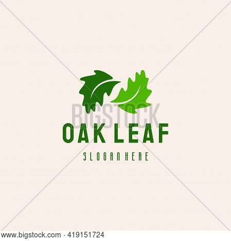 Oak Leaf Logo Vintage Retro Style Logo Designs Vector