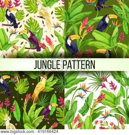 Jungle Vector Seamless Pattern Exotic Collection, Parrot, Toucan, Banana Leaves, Monstera Flowers. N