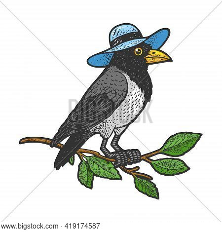 Crow In Hat Color Sketch Engraving Vector Illustration. T-shirt Apparel Print Design. Scratch Board