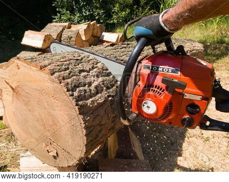Bosnia And Herzegovina - July 16, 2020: Arborist Is Cutting Big Oak Log With Chainsaw, Safety At Har
