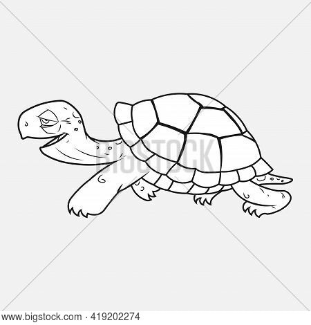 The Stylized Image Of A Turtle On A Gray Background