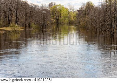 Flooded Trees. Spring Flood. Landscape. The Flood Of The River