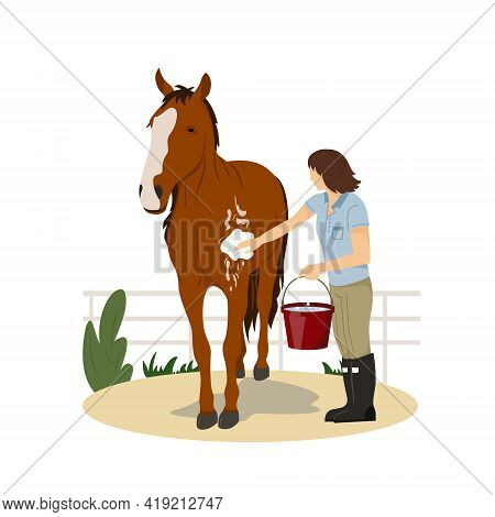 Girl Washing Horse. Pet Care. Horse Riding. Equestrian Sport. Isolated Vector Illustration On A Flat