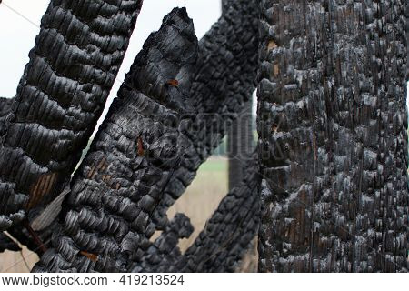 Burnt Wood Fence Close Up On Blurred Outdoors Background