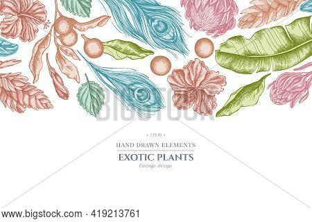 Floral Design With Pastel Banana Palm Leaves, Hibiscus, Solanum, Bromeliad, Peacock Feathers, Protea