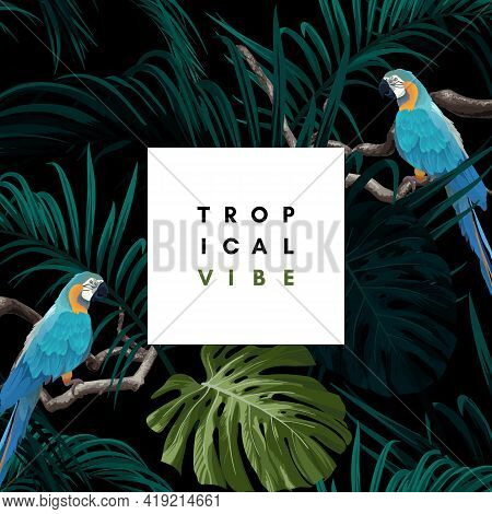 Dark Tropical Design With Exotic Monstera And Royal Palm Leaves, Blue Macaws And Branches. Vector Il