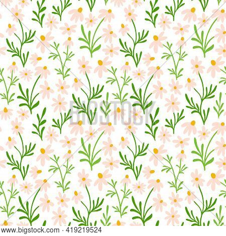 Chamomile And Daisy Seamless Pattern. Wildflower Print Design With Hand Drawn Flowers On White Backg