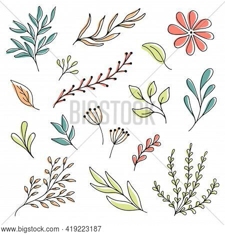 Set Woodland Leaves Illustration. Hand Draw Vector Collection Of Cute Foliage.