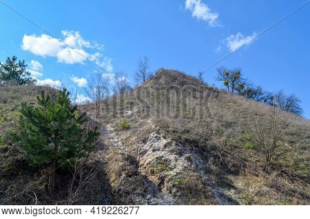 View On The High Hill Covered With Grass With A Small Fir Tree Growing On The Side Of The Hill. Blue