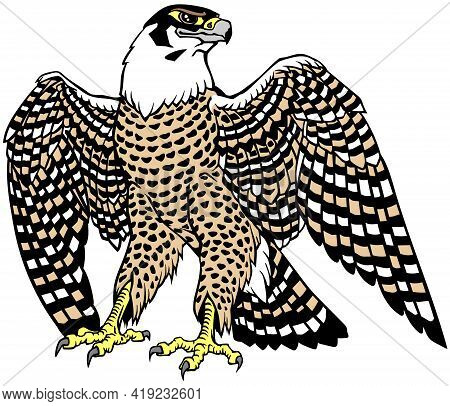 Falcon A Hunter With Opened Its Wings. Bird Of Prey. Falconry. Isolated Vector Illustration