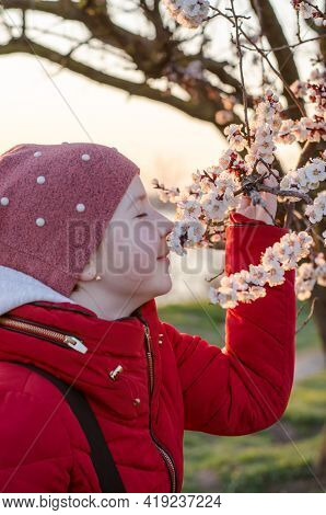 A 10-year-old Girl Sniffs The Flowers Of An Apricot Tree. Teenage Girl Enjoying The Scent Of Spring