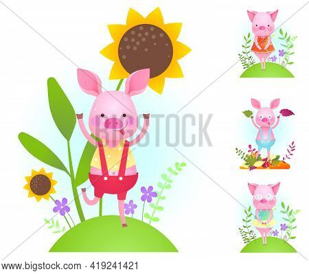 Funny Piggy Backgrounds Set - Vector Humor Color Illustration