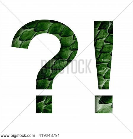 Dragon Skin Font. Exclamation And Question Marks Cut Out Of Paper On The Background Of The Dark Gree