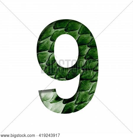 Dragon Scale Font. Digit Nine, 9 Cut Out Of Paper On The Background Of The Dark Green Skin Of A Myst