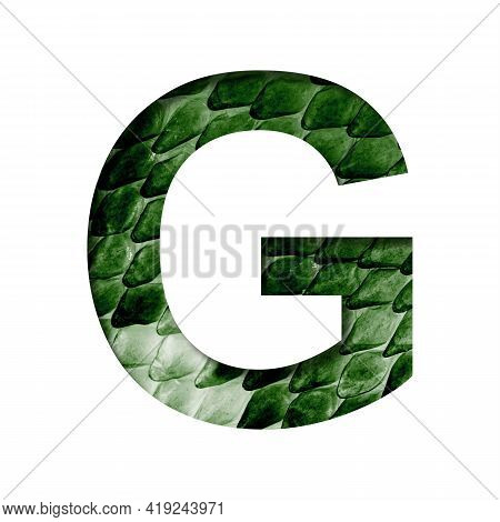 Dragon Skin Font. The Letter G Cut Out Of Paper On The Background Of The Dark Green Skin Of A Mystic