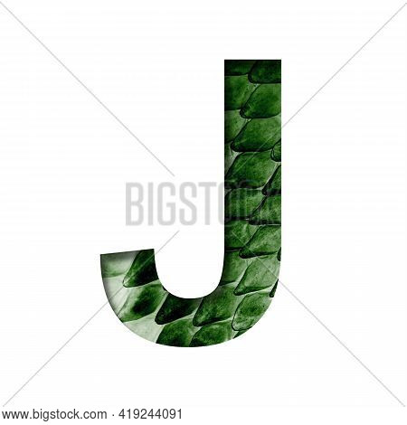 Dragon Skin Font. The Letter J Cut Out Of Paper On The Background Of The Dark Green Skin Of A Mystic