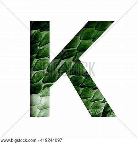 Dragon Skin Font. The Letter K Cut Out Of Paper On The Background Of The Dark Green Skin Of A Mystic
