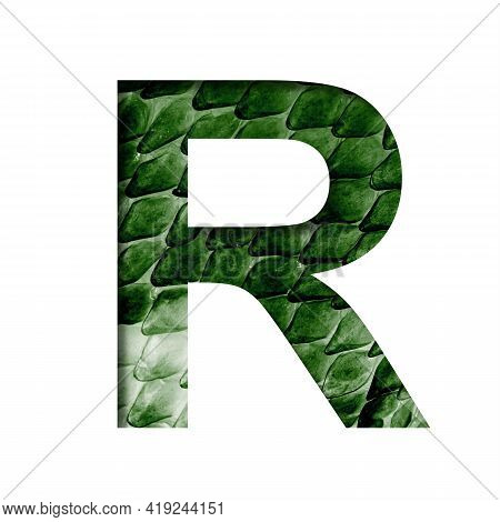 Dragon Skin Font. The Letter R Cut Out Of Paper On The Background Of The Dark Green Skin Of A Mystic
