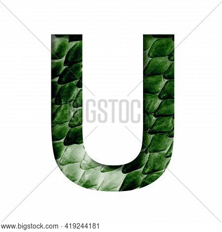 Dragon Skin Font. The Letter U Cut Out Of Paper On The Background Of The Dark Green Skin Of A Mystic