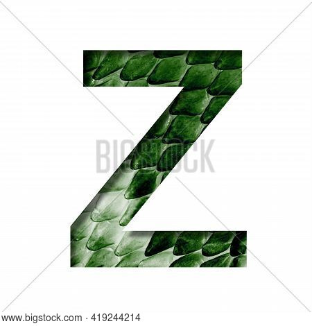 Dragon Skin Font. The Letter Z Cut Out Of Paper On The Background Of The Dark Green Skin Of A Mystic