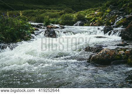 Beautiful Landscape With Big Mossy Boulders In Clear Water Of Powerful Mountain River Near Wild Thic