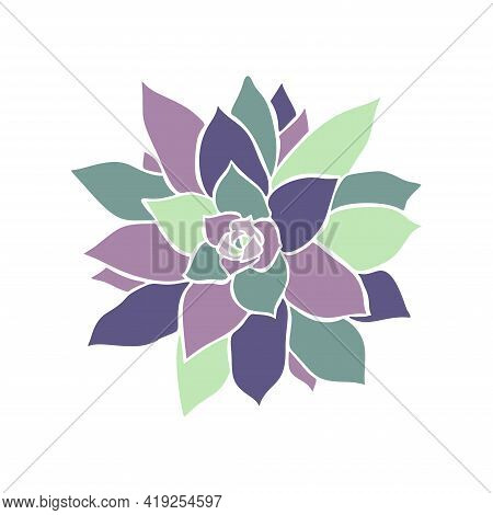 Beautiful Collection With Green And Lilac Succulent Cactus Hand Drawn Top View For Decoration Design