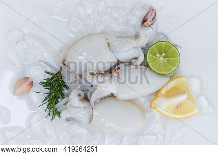 Seafood Squid On Ice For Cooking Food In The Restaurant, Fresh Raw Octopus Cuttlefish Ocean Gourmet